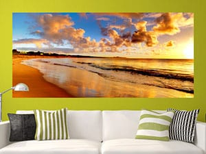 Custom Removable Wall Murals