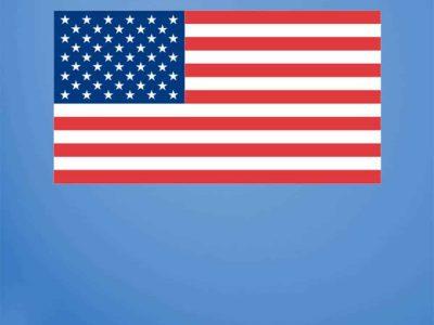 USA Flag Wall Graphic Print